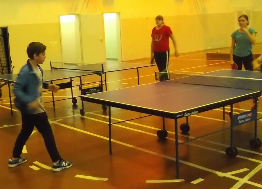 Предновогодние соревнования: спортсмены Морозовска и района сразились за призовые места по домино, настольному теннису и шашкам