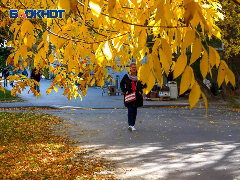 Прохладнее и ветренее будет в Морозовске в четверг