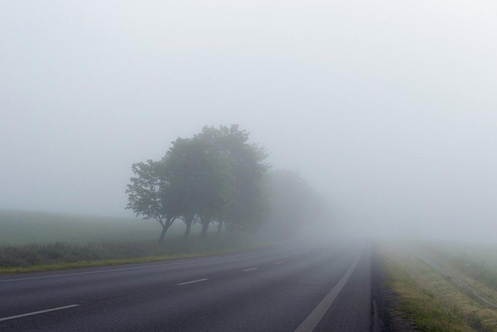 Туман ожидается в Морозовске утром и вечером во вторник
