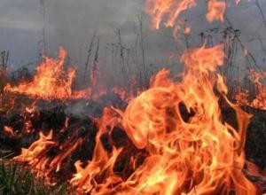 Пожароопасные дни продолжаются: пришло предупреждение от МЧС
