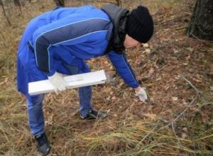 Диких плотоядных животных Ростовской области начнут прививать против бешенства