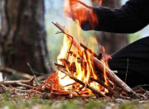Морозовчанам и всем дончанам запретили ходить в лес