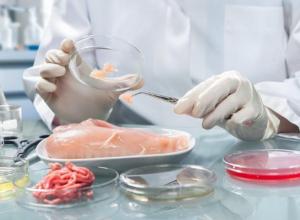Бактерии Listeria monocytogenes обнаружены в полуфабрикатах из мяса птицы в Ростовской области