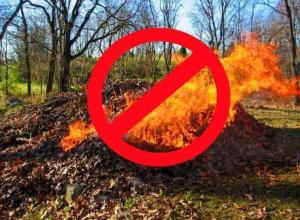 Морозовчан предупредили о штрафах до 100 тысяч рублей за выжигание сухой растительности