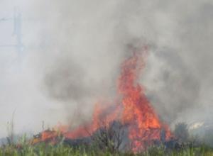 Загоревшаяся рядом с телевышкой городская свалка не на шутку обеспокоила жителей Морозовска