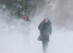Морозовчане, приготовьтесь: 23 февраля грядет сильный мороз с метелью и гололедицей