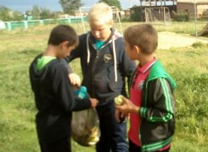 Письмо в редакцию: Ребята в хуторе Морозов отправились в гости к природе