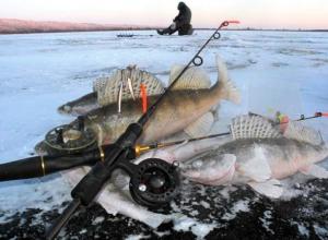 Топ-10 первоочередных покупок морозовчан к сезону зимней рыбалки