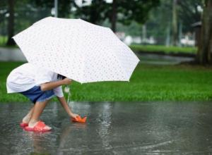 Майский кратковременный дождь обещают морозовчанам во вторник 22 мая