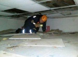Застрявший на крыше магазина в Морозовске кот оказался старым знакомым спасателей