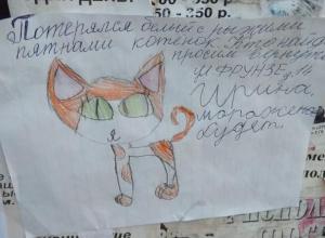 Мимишное объявление разместили в Морозовске