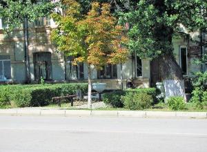 «Твори добро и убегай» - так  прошёл поиск «Блеска и Нищеты» на улице Ленина в Морозовске
