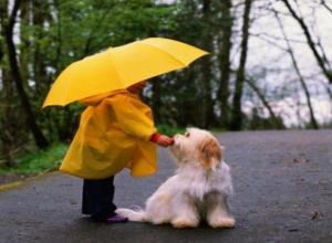 10 ноября в Морозовске ожидается небольшой дождь