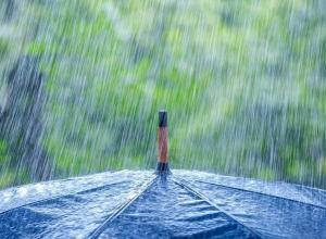 Дождь собьет Морозовску температуру