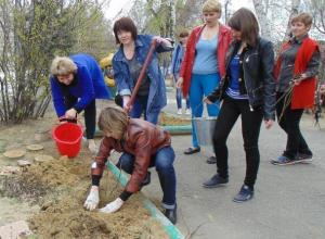 Письмо в редакцию: Розы, сирень и бульденеж посадили в день древонасаждений в детском саду Морозовска