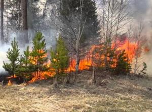 Чрезвычайная пожароопасность в Морозовском районе сохранится до конца недели