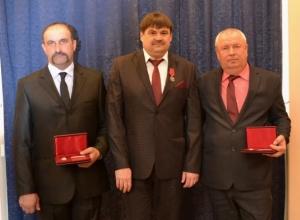 Три героя жатвы из Морозовского района получили государственные награды