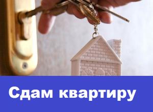 Сдается отремонтированная однокомнатная квартира на длительный срок
