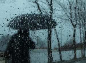Дождливое потепление обещают Морозовску в начале недели синоптики