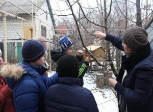 Детский отдел библиотеки в Морозовске принял участие во второй межрегиональной акции, посвященной книгам Нины Павловой