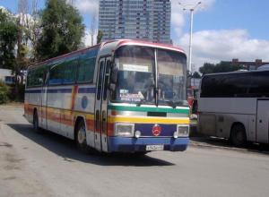 Вопрос-ответ: Будет ли ходить автобус «Морозовск-Ростов»?