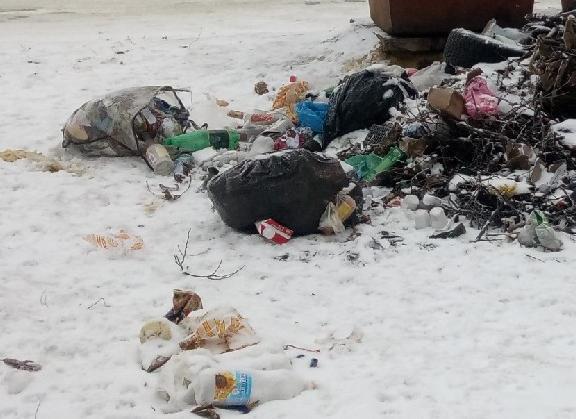 Сотни жалоб на мусор поступили от дончан в первые же дни 2019 года