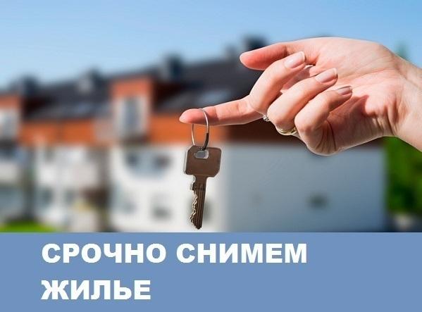 Семья срочно снимет квартиру в Морозовске