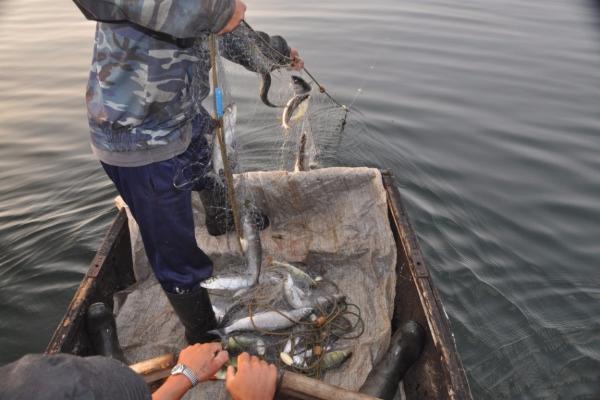 Сотрудники Морозовской линейной полиции задержали трёх «нелегальных» рыбаков