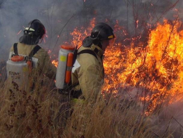 Чрезвычайная пожароопасность на Дону: за неделю ликвидировано 35 пожаров и спасено 58 человек