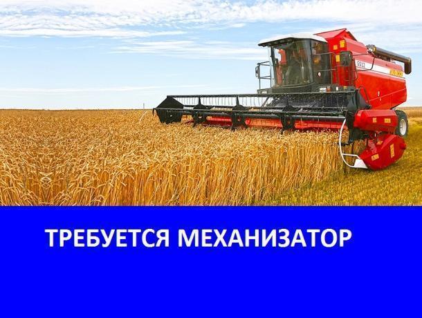 Требуются механизаторы в ЗАО «Вишневское»