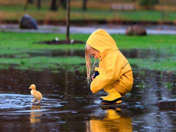 Небольшой дождик обещают морозовчанам в воскресенье, 23 сентября