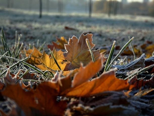 Ясное и морозное утро ожидает морозовчан в последний рабочий день недели