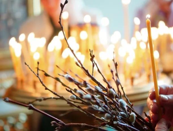 Почему принято освящать вербу объяснил настоятель храма Рождества пресвятой Богородицы Морозовска