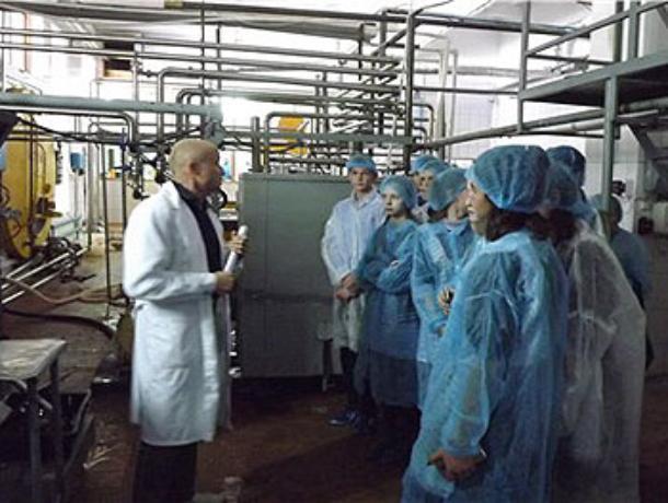 «Неделя без турникетов» в Морозовске началась с традиционных «Вкусных экскурсий»