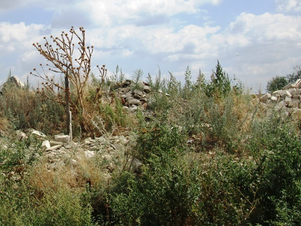 Что стало со старыми казачьими хуторами и поселками на территории нынешнего Морозовского района