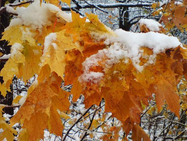 Настоящая зима придет в Морозовск в последний день уходящей недели