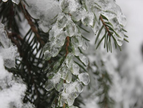 Снег и ледяной дождь возможен в Морозовске во вторник, 4 декабря