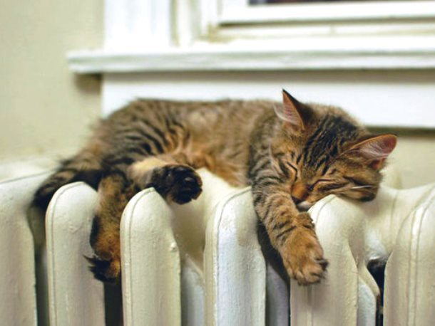 Вопрос-ответ: Когда включат отопление?