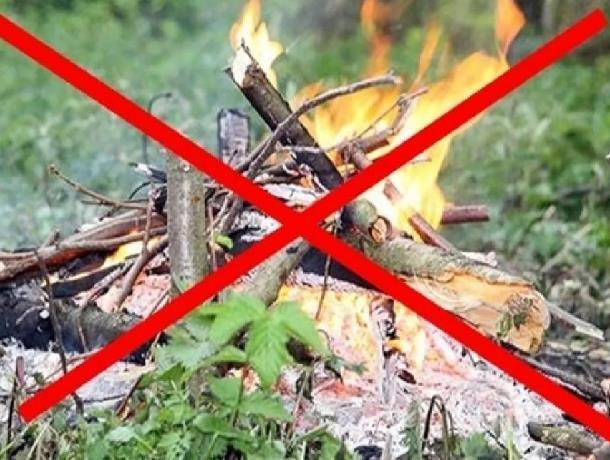 Морозовчан попросили принять дополнительные меры для осуществления пожарной безопасности