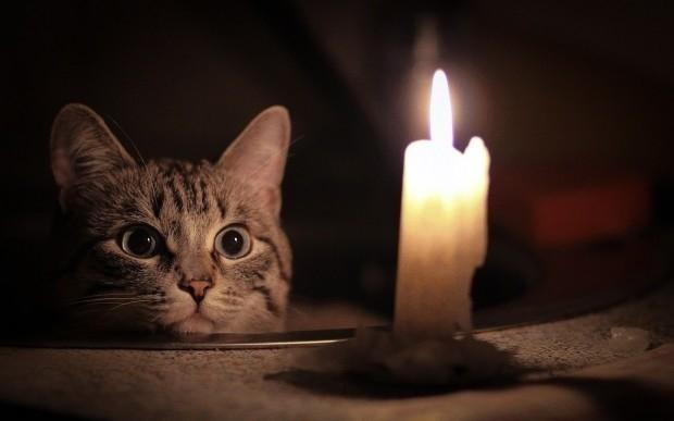 В День Влюбленных свет в Морозовске погаснет на 2 часа