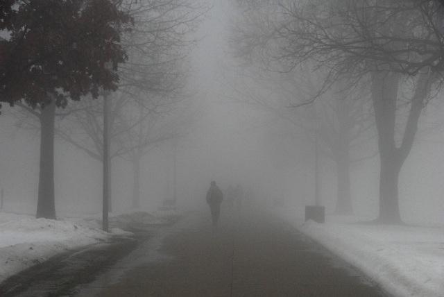 +2: потепление в Морозовске продолжается