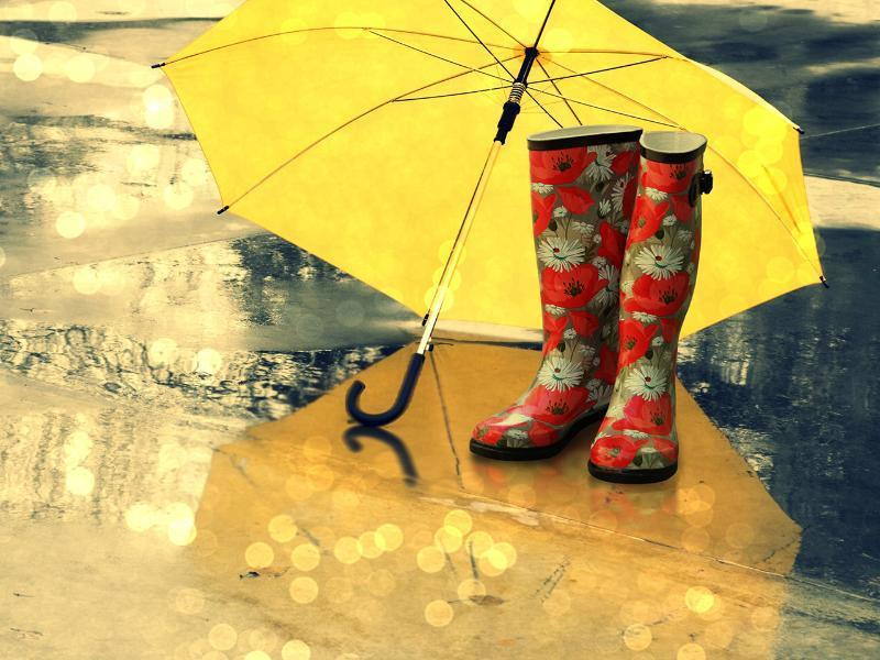 Вторник для морозовчан тоже может оказаться дождливым