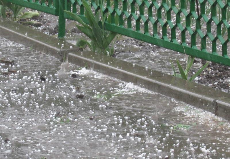 Огородники в Морозовске рыдают: сильный град побил рассаду