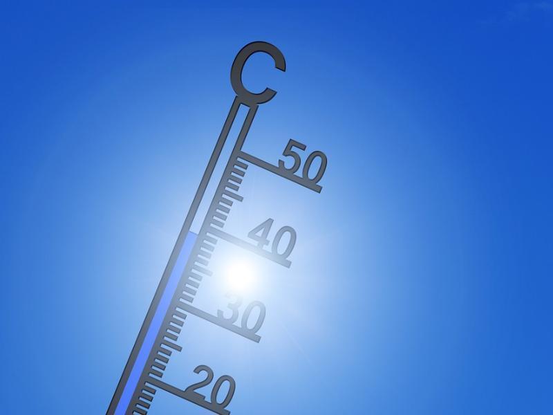 До +36 градусов в тени обещают морозовчанам в четверг, 22 августа