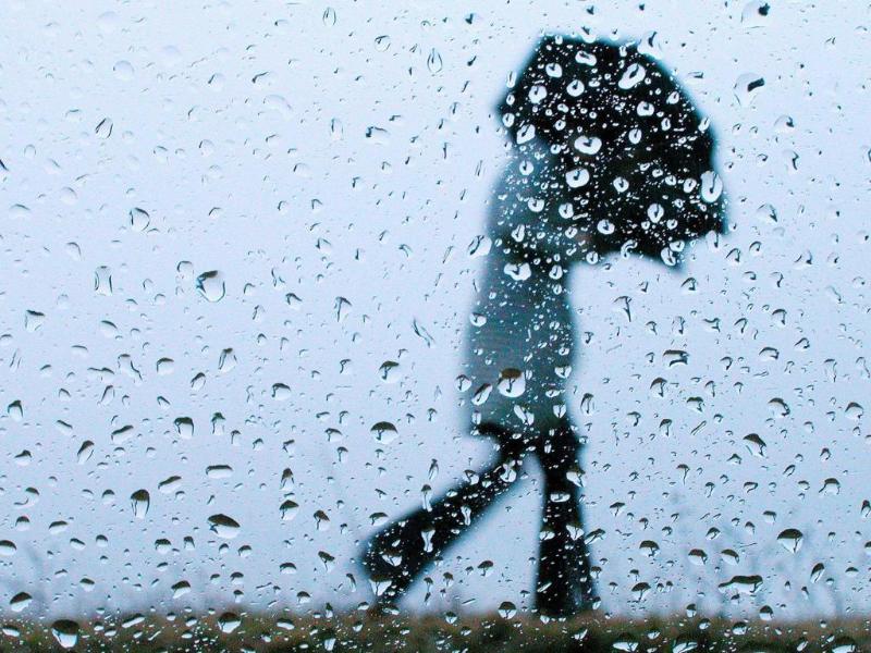 Пасмурным и ветреным будет в Морозовске последний рабочий день этой недели