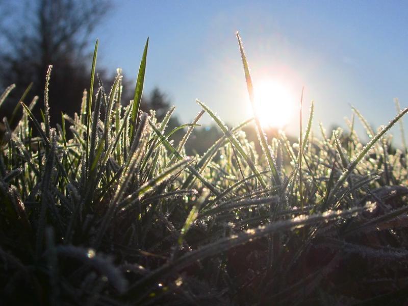 Небольшое потепление обещают морозовчанам в конце недели