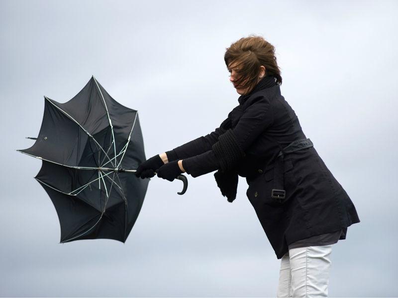 Приготовьтесь к ливню и сильному ветру: пришло предупреждение об ухудшении погоды в Ростовской области