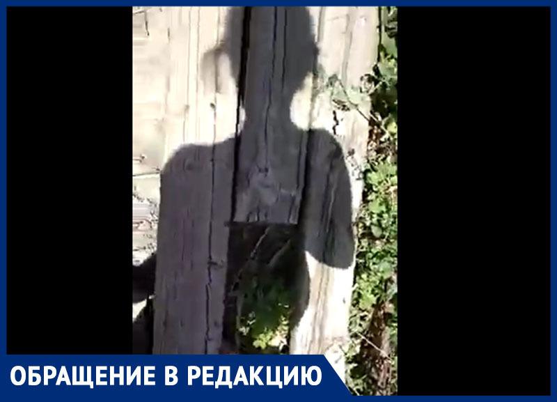 Морозовчанка чуть не упала, снимая видео о разваливающемся мосте на улице Чернышевского