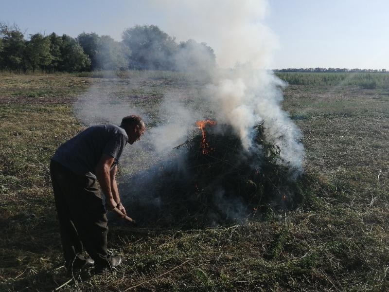 12 тонн дикорастущей конопли скосили и сожгли в Костин-Быстрянском сельском поселении