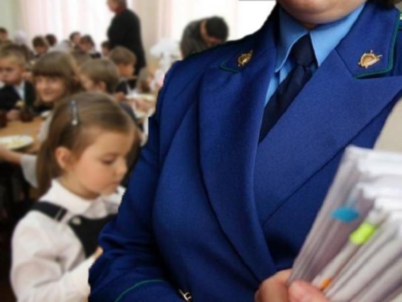 Шесть исковых заявлений об обеспечении безопасности в школах Морозовского района предъявила прокуратура